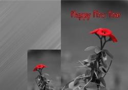 New-Year-04
