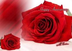 Anniversary-01