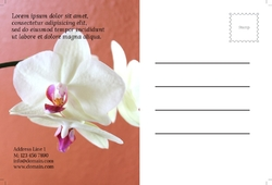 spa-saloon-postcard-30