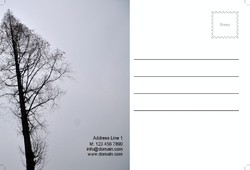 postcard-600