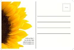 postcard-703